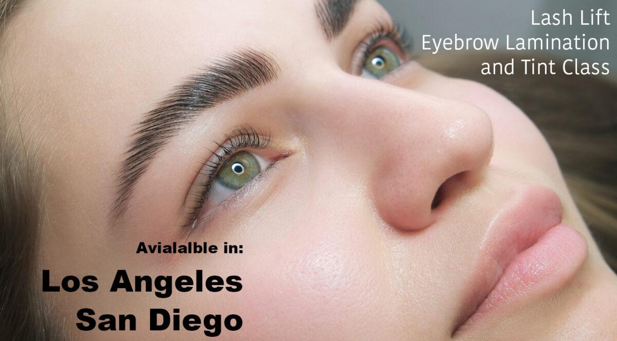 Lash Lift, Eyebrow Lamination and Tint Class   Hollywood ...